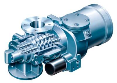 Screw vacuum pumps